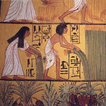 Veggmaleri fra Sennutems gravkammer i Luxor i Egypt (1550-1069 f.Kr). (Foto: Wikimedia Commons)