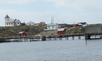 På Sauøy finnes sau, beiteland, dyrkamark og et fint kapell - men under ti mennesker på helårsbasis. (Foto: Katrina Rønningen)