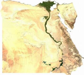Satellittbilde av Egypt. (Foto: Wikimedia Commons)