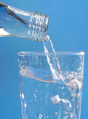 - Det er ikke farlige bakterier i flaskevannet, sier forskere ved Høgskolen i Oslo. (Foto: Wikimedia Commons)