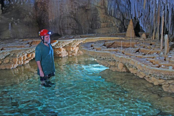 Makrokrystaller av kalsitt dekker veggene i et ferskvannsbasseng i Vallgornera-grotten i Spania. (Image © Tony Merino)