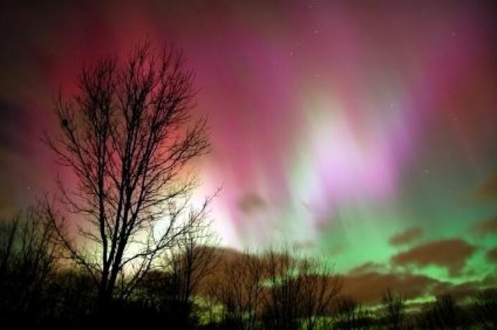 """""""Det er solvinden, i kollisjon med jordas magnetfelt, som lager det spektakulære nordlyset. (Foto: iStockphoto)"""""""