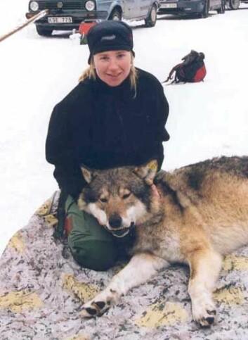 """""""Marianne Linder Olsen med en død hannulv. (Foto: Jon Martin Arnemo)"""""""