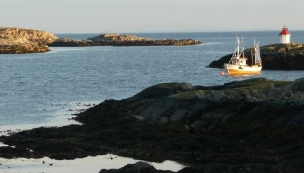 Kystfiske og litt jordbruk har vært hovednæringsvei i Froan. Men fiskebestandene har gått ned. Og vernevedtakene har medført redusert mulighet til høsting og bruk. (Foto: Katrina Rønningen)