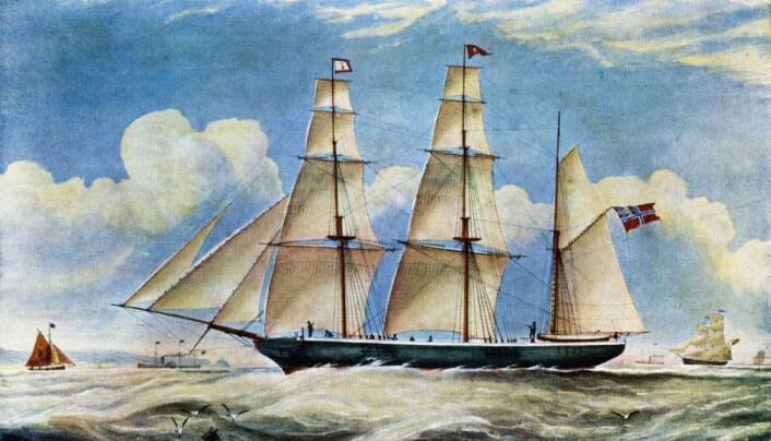 En sjømann på egersundskipet Emigrant brakte et stykke sedertre med seg en gang midt på 1800-tallet. (Arkiv: Dalane Folkemuseum)