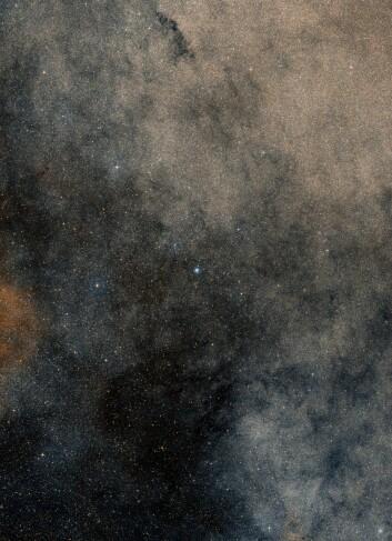 Bildet viser hele regionen rundt kulehopen Terzan 5. (Foto: ESO/Digitized Sky Survey 2)