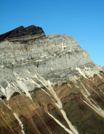 De avslørende avleiringene ble funnet øverst i dette fjellet i Canada. (Foto: Francis Macdonald)