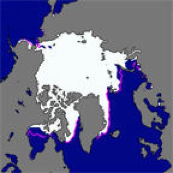 I november 2008 var polisens utbredelse på 10, 63 millioner kvadratkilometer. Den lilla linjen som kan skimtes på bildet er gjennomsnittlig isutbredelse i november fra 1979 til 2000. (Illustrasjon: NSIDC)
