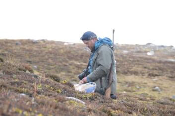 Forsker Tommy Prestø samler mose. (Foto: Kristian Hassel)