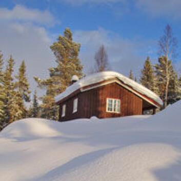 Noen hytteeiere ønsker det enkle og naturnære.