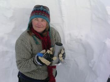 Elisabeth Isaksson har ledet prosjektet som har fastlagt temperaturutviklingen på Svalbard og i Nord-Norge. (Foto: Sviceclim)