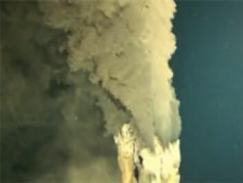 Forskerne fanget varmekilden på en video som viser hvordan varmt vann blir pumpet ut av de vulkanske pipene. (Foto: Skjermdump fra YouTube, se videoen her)