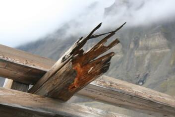 En av taubanebukkene til Gruve 2b ble slått overende av et snøras i januar i år. Taubanen fraktet kullet fra gruva og ned til utskipningskaia. Den bakenforliggende årsaken til at bukken ga etter var at bena var sterkt svekket av råte. Hele anlegget er automatisk fredet etter Svalbardmiljøloven. (Foto: Anne-Cathrine Flyen)