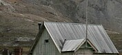 Sopptrussel på Svalbard