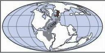 Kartet viser hvordan alle kontinenter satt sammen i er stort kontinent, Pangea. Camp står for Den Central-Atlantiske Magmatiske Provins, og det vil si utbredelsen av de vulkanske bergartene ved trias/jura-tiden. Stjernene viser hvor Sverige og Tyskland lå. Danmark var under vann. (Grafikk: Sofie Lindström, GEUS)
