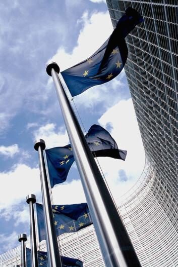 Europa knyttes mer og mer sammen, også gjennom sammenkobling av forvaltningsnivåene.