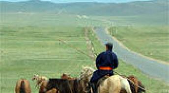Hoppemelk fra Mongolia