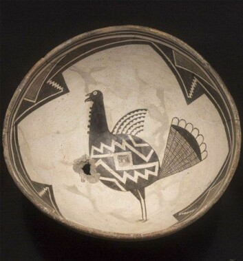 Bolle med kalkunmotiv fra Mimbres-kulturen i dagens New Mexico, USA. Slike gjenstander ble laget mellom år 1000 og 1200. (Foto: Eirc J. Kaldahl/The Amerind Foundation, Inc., Dragoon, Arizona)