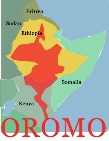 Oromospråket brukes over hele det østlige Afrika. (Illustrasjon: Annica Thomsson)