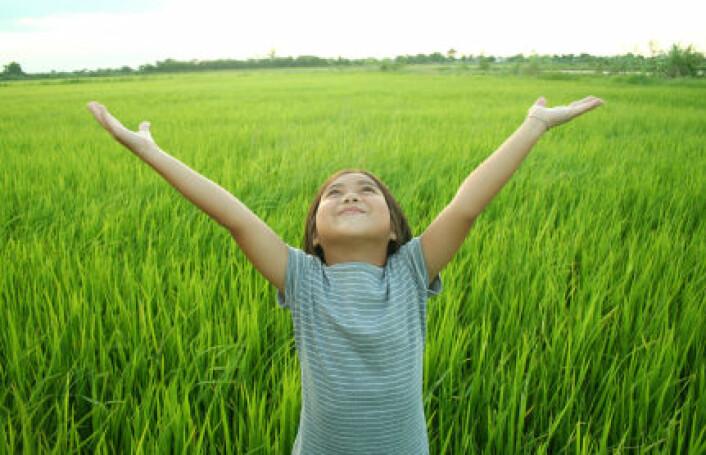 """""""Få """"oppfinnelser"""" i menneskets historie har hatt større betydning enn risplanten. (Foto:iStockphoto)"""""""