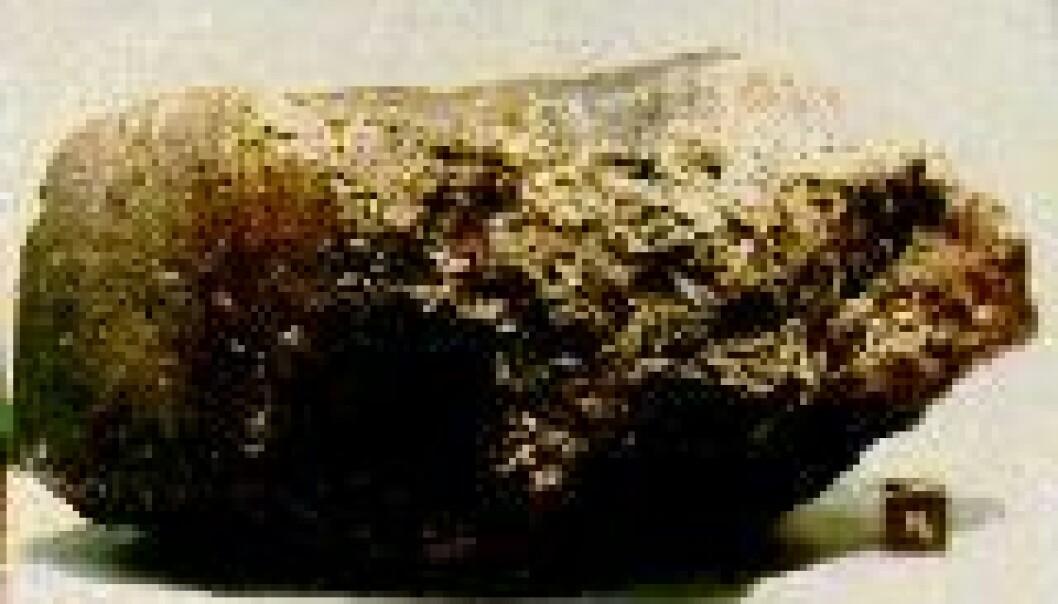 Hadde Mars bakteriebefengte sjøer?