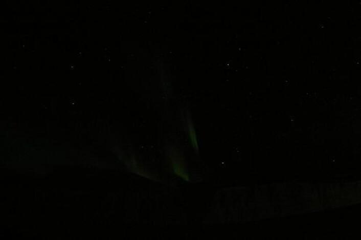 Nordlyset sett fra Svalbard, klokka 7:30 i dag tidlig. (Foto: Magnar Gullikstad Johnsen)