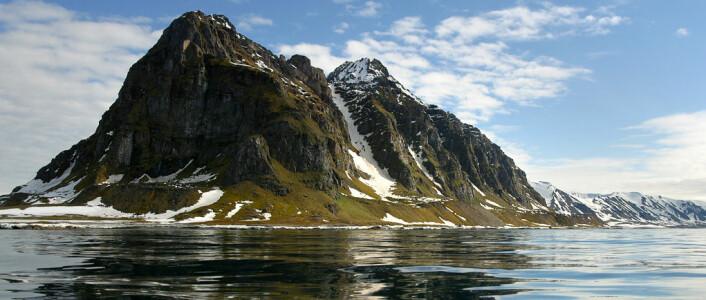 Nordspissen av Prins Karls Forland, Svalbard (Foto: Per Harald Olsen)