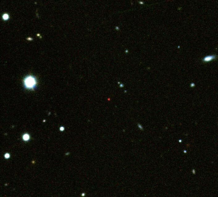 GRB 090423 er den lille, veldig røde lyskilden midt på dette bildet. Den røde fargen henger sammen med den store avstanden - rundt 13,1 milliarder lysår - siden alt optisk lys har blitt absorbert av intergalaktisk hydrogengass, er det bare det infrarøde lyset vi ser. Alle de andre galaksene og stjernene på bildet er mye nærmere oss, og befinner seg tilfeldigvis på den samme fliken av himmelen. (Foto: A.J.Levan & N.R.Tanvir)
