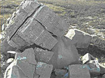 Ødelagt monument over sovjetiske krigsfanger som døde på Saltfjellet. (Foto: Harry Bjerkli)