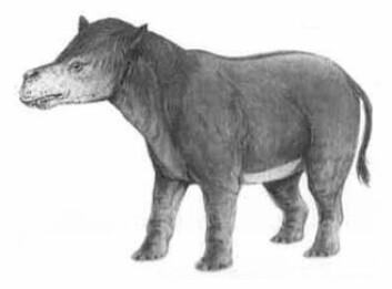 Pantodont (Illustrasjon: Naturhistorisk Museum)