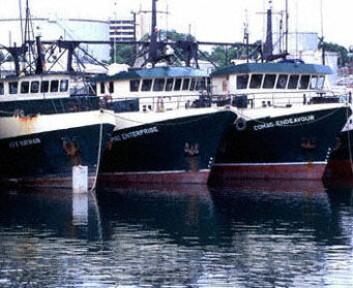 """""""- Uten 200-milsoner ville fiskeriforvaltningen vært det reneste kaos, sier Hannesson."""""""