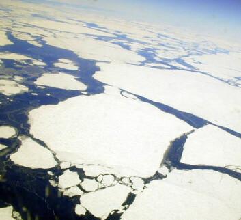 """""""Økt smelting av havis i Arktis sommeren 2007 kan ha bidratt til mer havis om vinteren utenfor Grønland, så kalde vinderføyk langt ut over isen, til havområdene hvor blandingen foregår."""""""