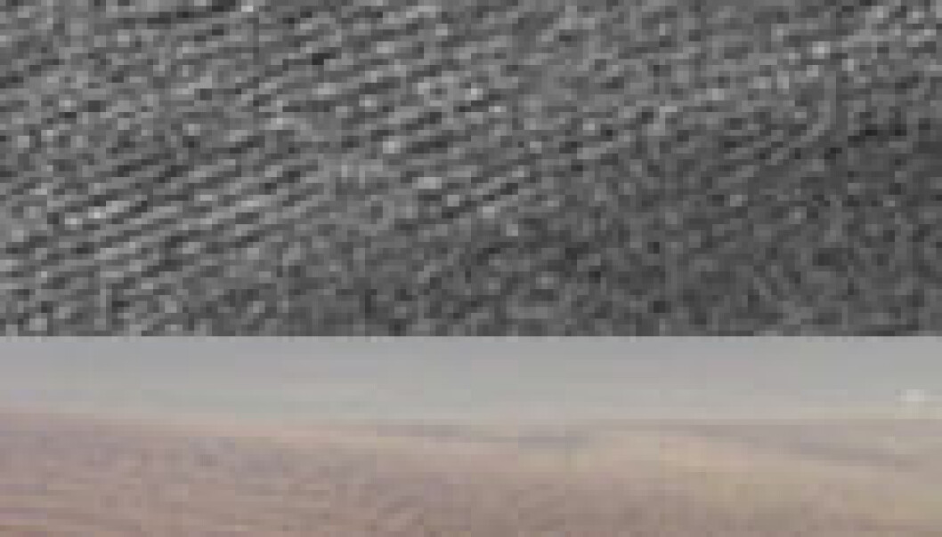 """Øverst: Radarbilde fra Titan. Nederst: Sanddyner i Namibia i Sør-Afrika. Foto: NASA/ESA."""
