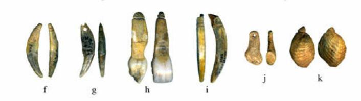 Smykker laget av neandertalere eller moderne mennesker? Funnene fra Grotte du Renne i Burgund, Frankrike, av smykker laget av dyreknokler, hoggtenner og skjell kan ha ført arkeologer til å feilbedømme neandertalerne. (Foto: M. Vanhaeren/CNRS Nanterre, France)