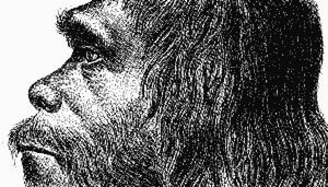 Neandertaler, tidlig rekonstruksjon. (Ill: Wikipedia)