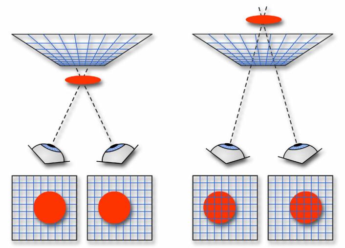 """""""Figuren viser hvordan venstre og høyre øye ser sirkelen fra litt forskjellig perspektiv (nederst) når den er foran (venstre) og bak (høyre) rutenettet. Den lille forskjellen i perspektiv skaper en opplevelse av dybde i synssenteret i hjernen. Dette kalles stereopsis. (Figur:forskning.no)"""""""