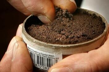 Kun en av fire norske snusbrukere har begynt med snus uten først å ha røykt sigaretter. (Foto: SIRUS/Nye bilder)