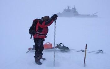 Boring etter iskjerne i sjøis. (Foto: Sebastian Gerland, Norsk Polarinstitutt)