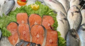 Fra årsskiftet skal all fisk i fiskedisken være merket med fangst eller slaktedato. (Foto: Frank Gregersen/Nofima)