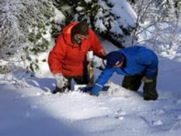 Hasse Palm fra Universitetet i Uppsala og Jomar Gellein fra NGU kontrollerer seismiske instrumenter i det skandinaviske høyfjellet.