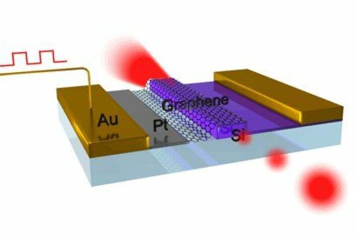 Her ser du oppbygningen av grafén-modulatoren. Et lag grafén (sort netting) plasseres over en bølgeleder av silisium (lilla), som brukes som en optisk fiber for å lede lyset. Elektriske signaler sendes inn fra siden gjennom gull (Au), og elektroder av platina (Pt) endrer mengden fotoner grafénet absorberer. (Grafikk: Ming Liu)