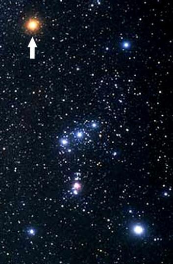 Betelgeuse utgjør venstre skulder i stjernebildet Orion, som er best synlig på vinterhimmelen. (Foto: Hubble/ESA/NASA)