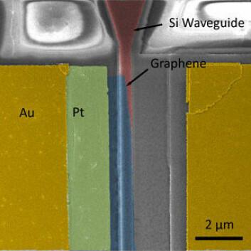 Mikroskopbilde av nøkkelstrukturene i grafén-modulatoren. Fargene er lagt på for å vise de ulike delene. Gult er gull, grønt er platina, blått er grafén. Grafénet ligger over bølgelederen av silisium, vist i rødt. Spenningen kontrollerer grafénets gjennomskinnelighet. (Foto: Ming Liu)