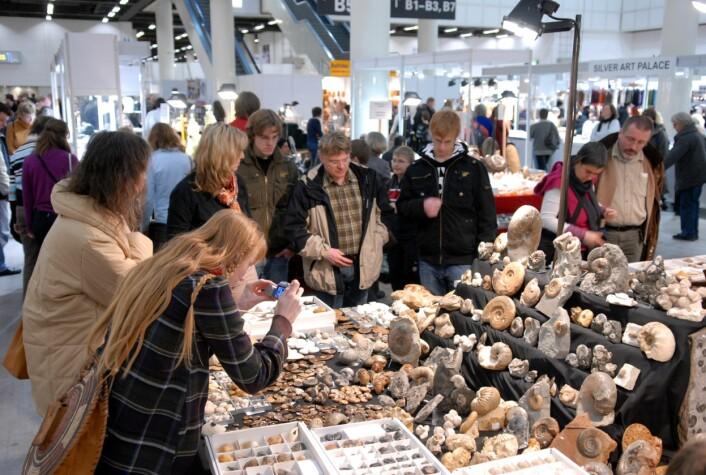 """""""Besøkende på Mineralien Hamburg har mulighet til å både se og kjøpe fossiler fra hele verden (Foto: Katrin Neuhauser)"""""""