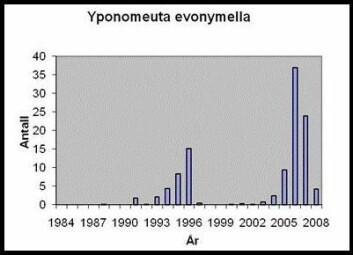 Figuren viser gjennomsnittlig årlig antall heggspinnmøll fanget i en lysfelle 1984-2008.