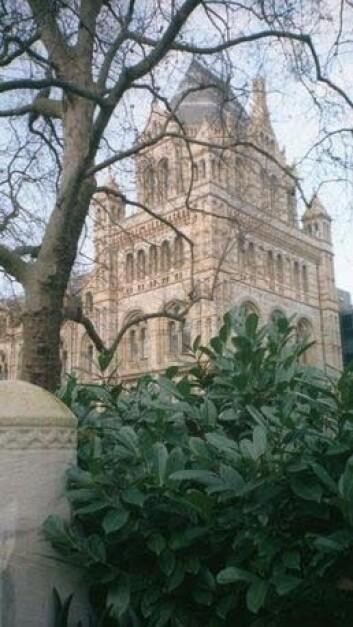 """""""Vitenskapsmuseet i London vurderer ekskrementkraft for fremtiden."""""""