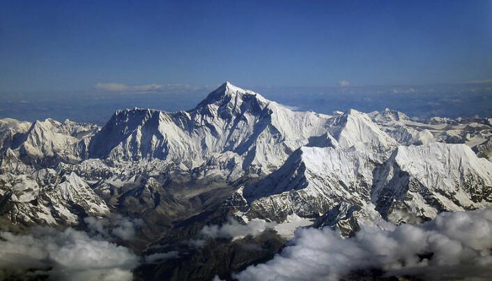 """""""Morgensol varmer toppen av fjellet Kangchenjunga i den indiske delen av Himalaya (Foto:Aaron Ostrovsky, Wikimedia Commons. Se lisens.)"""""""