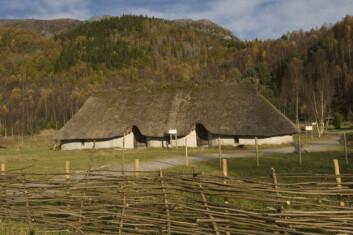 I midten av august 1995 ble det første bronsealderhuset med leirklinte flettverksvegger som var bygget i Norge på 2500 år innviet. (Foto: Terje Tvedt)