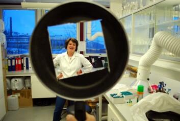 Et firkanta hull i ei steikepanne er faktisk en del av forskninga på det avanserte laboratoriet ved NILUs avdeling på Polarmiljøsentret i Tromsø. Seniorforsker Dorte Herzke kan måle mulige giftstoffer i teflonbelegget. (Foto: Helge M. Markusson)