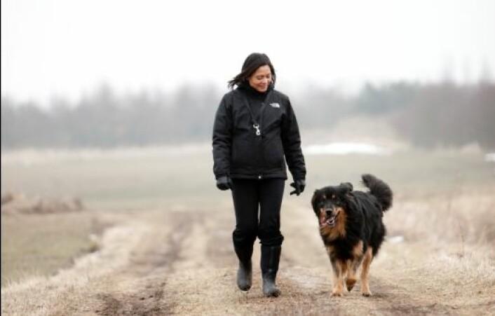"""""""En halvtimes tur med bikkja i rask gange gir like stor helseeffekt som en hard treningsøkt,ifølge Åse Bårdsen og Eline Thornquist. (Foto: www.colorbox)"""""""